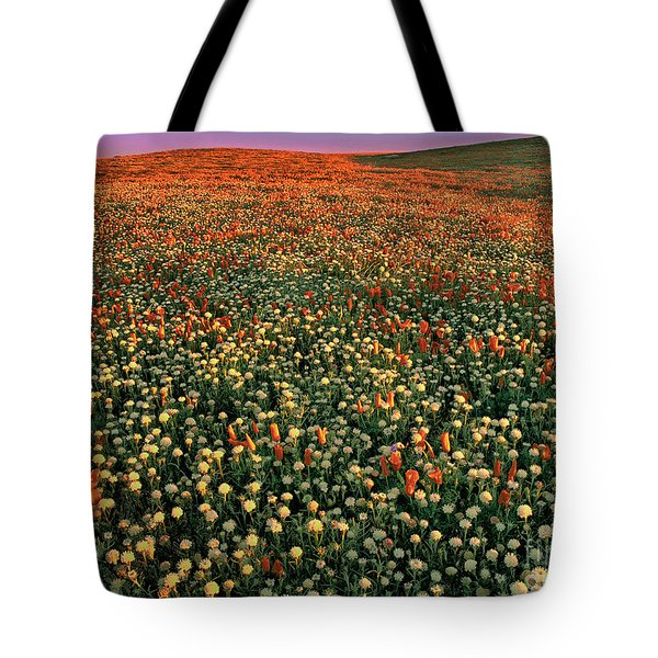 Tote Bag featuring the photograph California Poppies At Dawn Lancaster California by Dave Welling