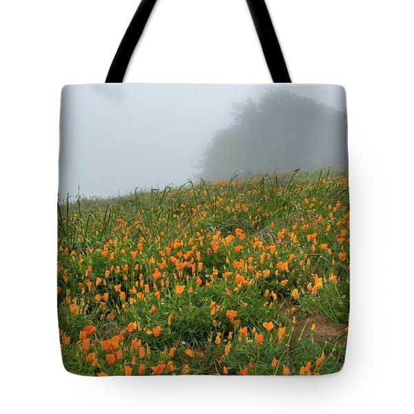 California Poppies On Volcan Mountain Tote Bag