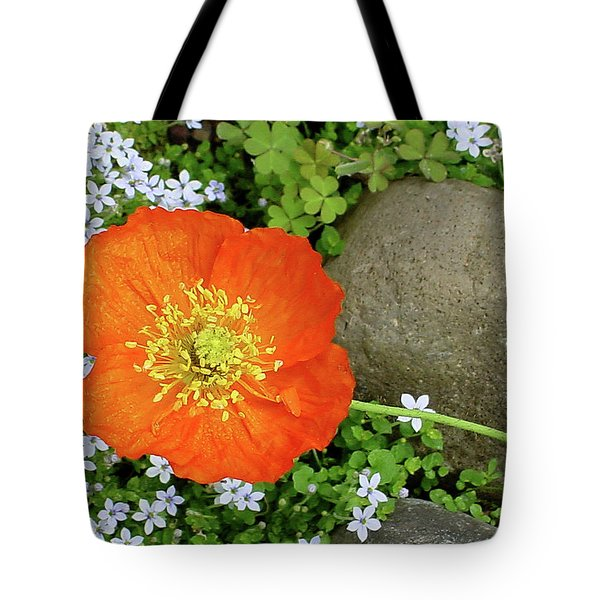 California Poppy Rock Garden Tote Bag by Shirley Heyn