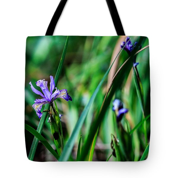 California Roadside Tote Bag
