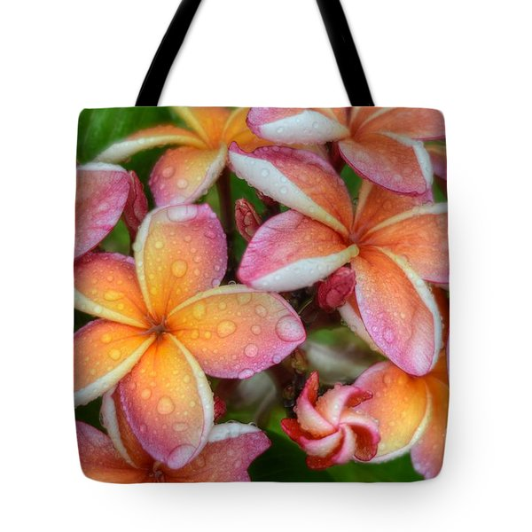 Tote Bag featuring the photograph California Sunset by Kelly Wade