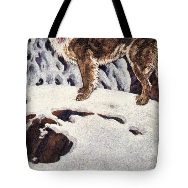 Call Of The Wild, 1903 Tote Bag by Granger