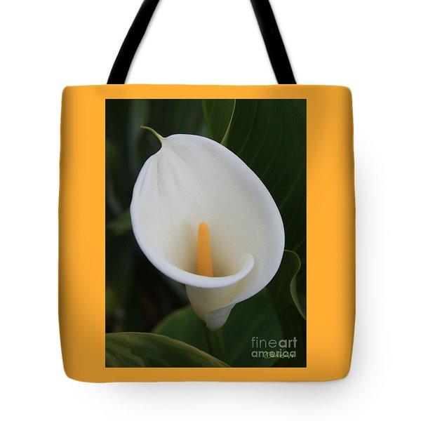 Perfect White Calla  Tote Bag