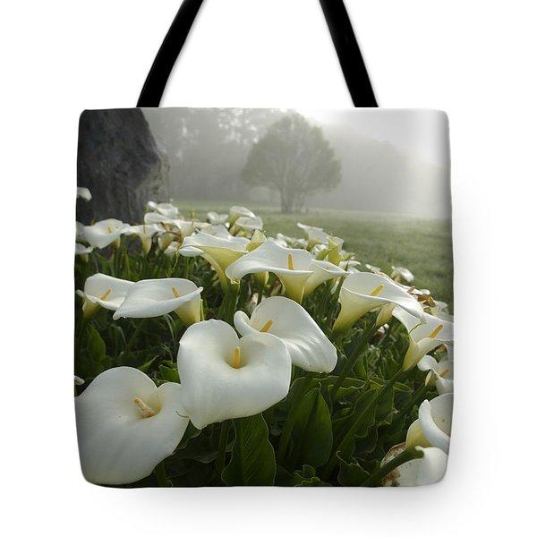Calla Lilies Zantedeschia Aethiopica Tote Bag