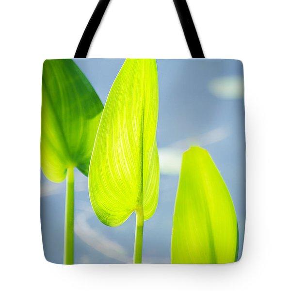 Calm Greens Tote Bag