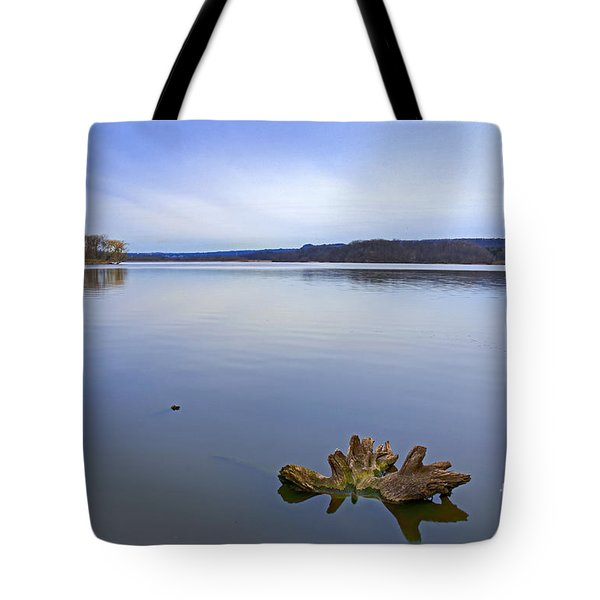Early Spring Calm Tote Bag by Charline Xia