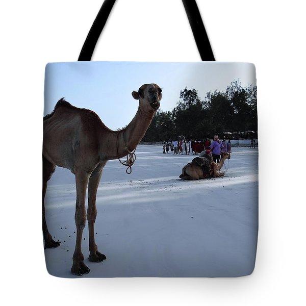 Camel On Beach Kenya Wedding 6 Tote Bag