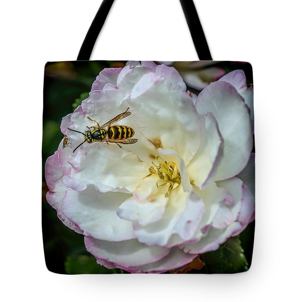 Tote Bag featuring the photograph Camelia With Company by Susi Stroud