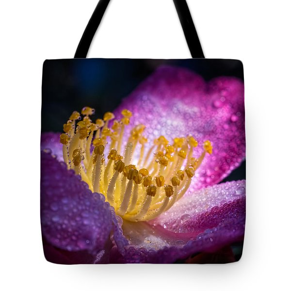 Camellia In Light And Shadow Tote Bag