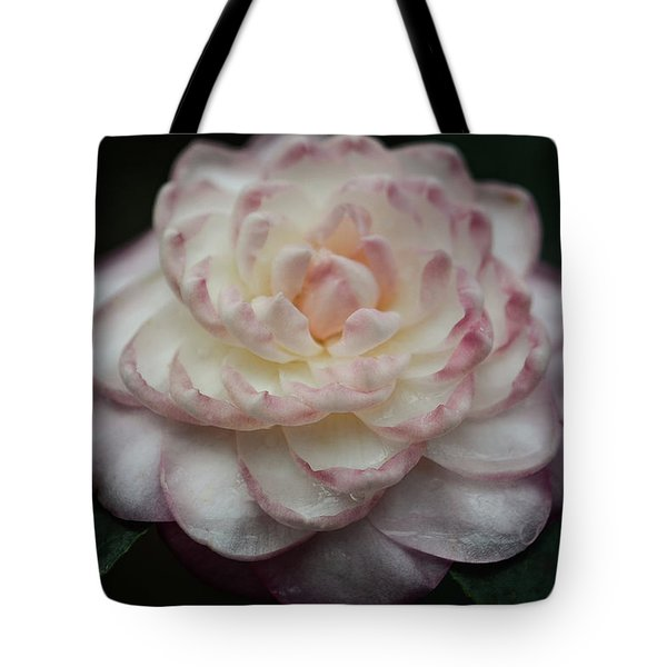 Camellia White And Pink Tote Bag