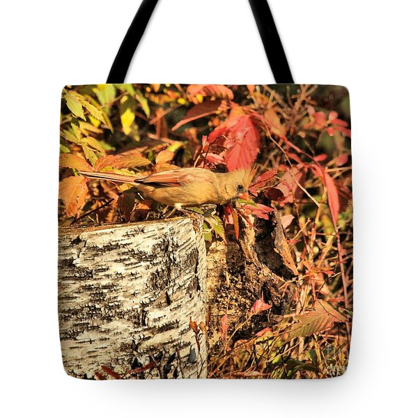 Camo Bird Tote Bag