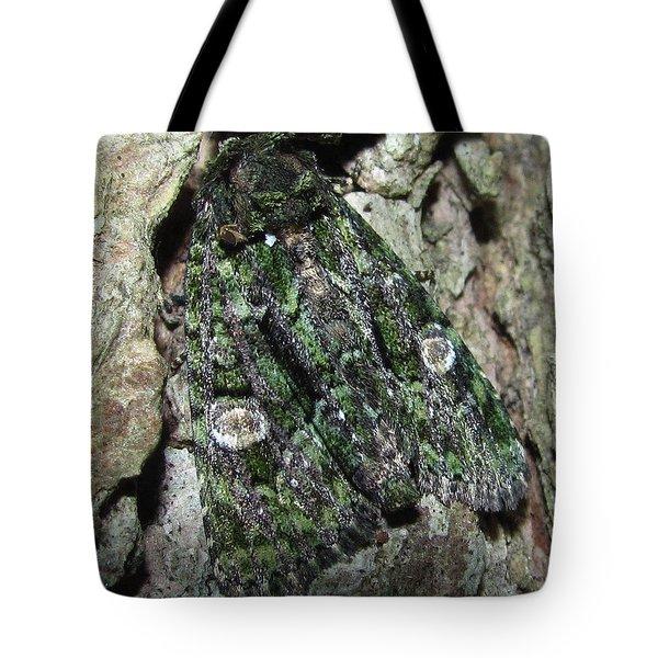 Green Owlet Moth Tote Bag