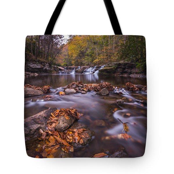 Campbell Falls Camp Creek State Park Tote Bag