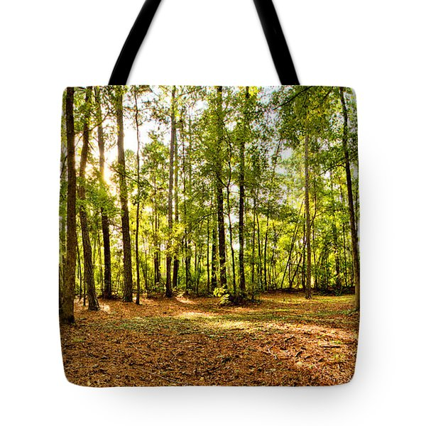 Campground At Fdr State Park Tote Bag
