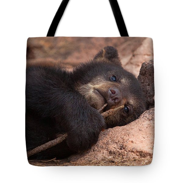 Can I Eat This Tote Bag