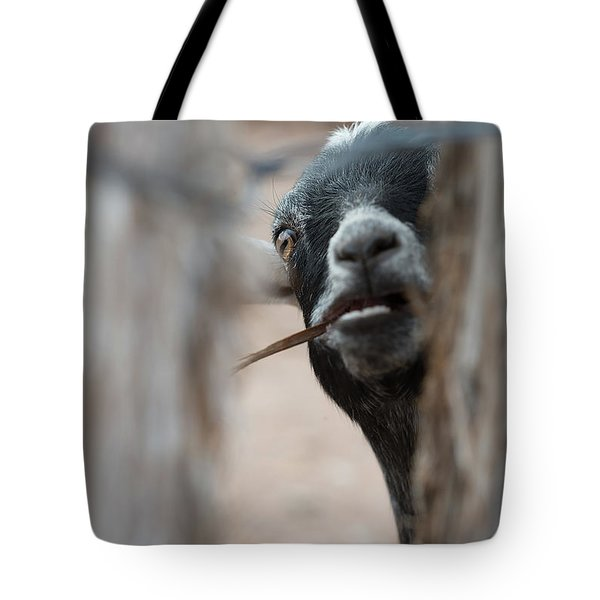 Can I Play? Tote Bag