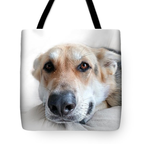 Can I Stay Here Tote Bag