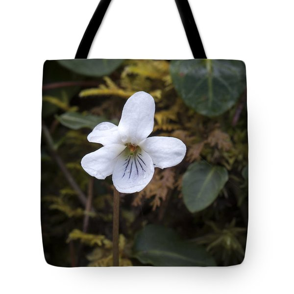 Can Tote Bag