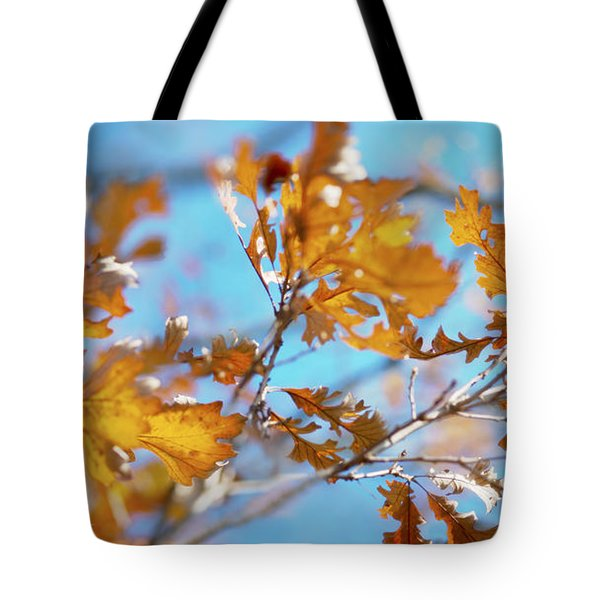 Can You Paint With All The Colors Of The Wind? Tote Bag