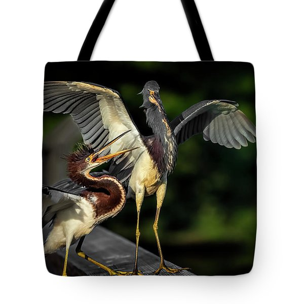 Can You Spare A Dime? Tote Bag