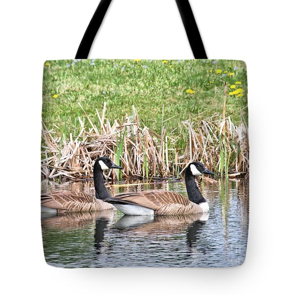 Tote Bag featuring the photograph Canada Geese by Debbie Stahre