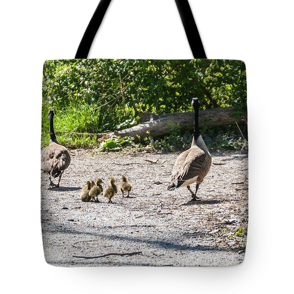 Canada Geese Family Walk Tote Bag