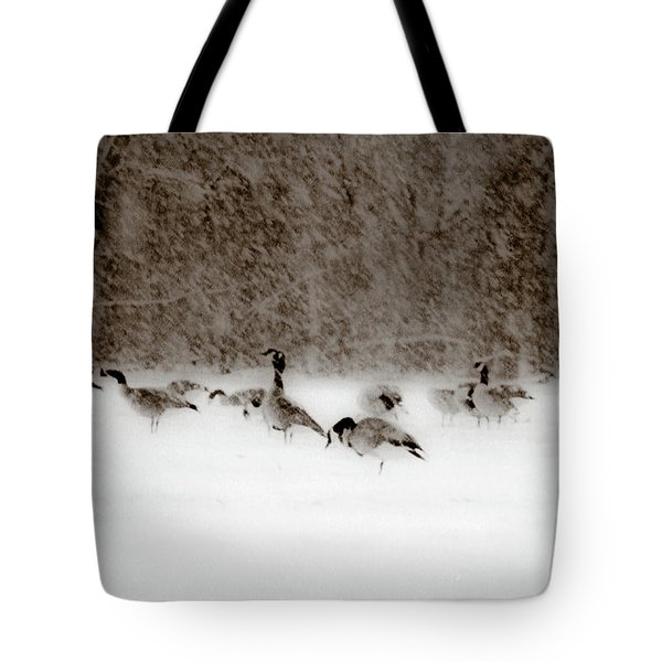 Canada Geese Feeding In Winter Tote Bag