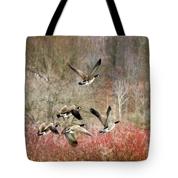 Canada Geese In Flight Tote Bag