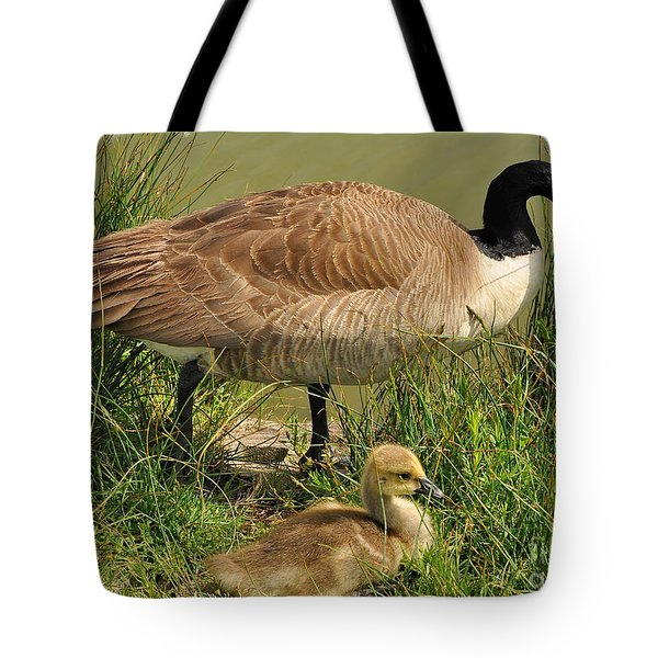 Canada Geese Parent And Child  Tote Bag by Merrimon Crawford