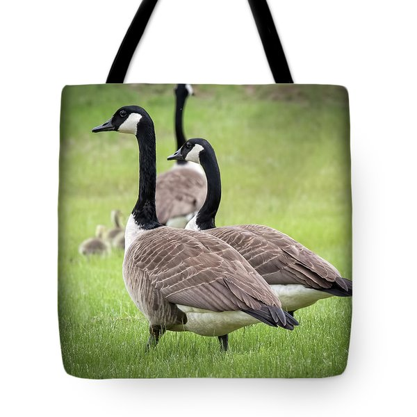 Canada Geese Tote Bag