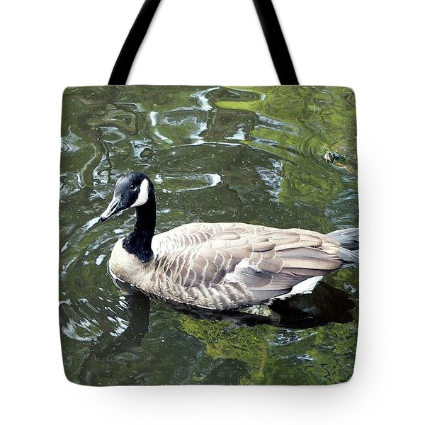 Canada Goose Pose Tote Bag by Al Powell Photography USA