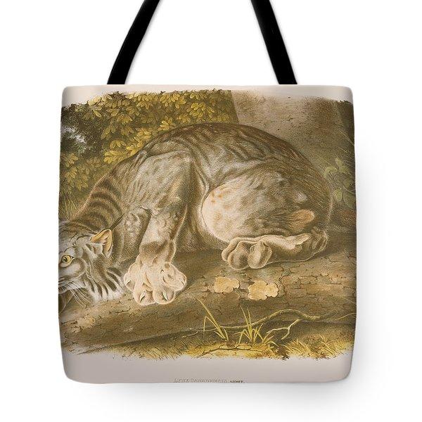 Canada Lynx Tote Bag by John James Audubon