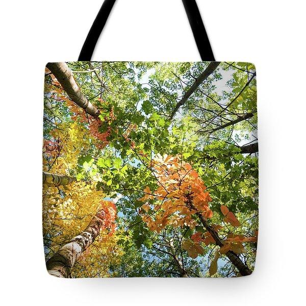 Canadian Foliage Tote Bag