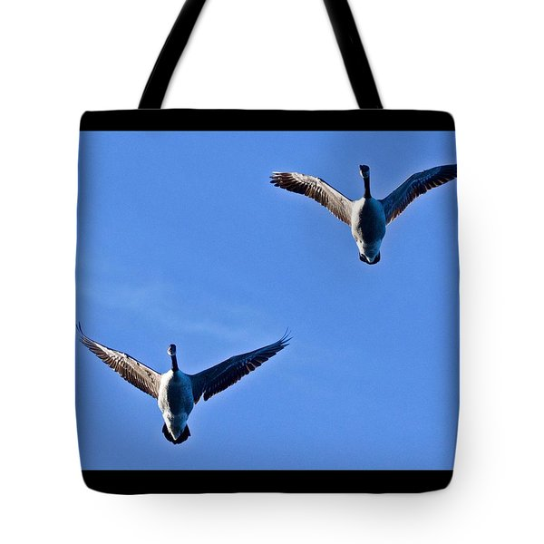 Tote Bag featuring the photograph Canadian Geese 1644 by Michael Peychich