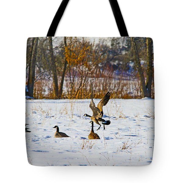 Canadian Geese At Sunrise IIi Tote Bag