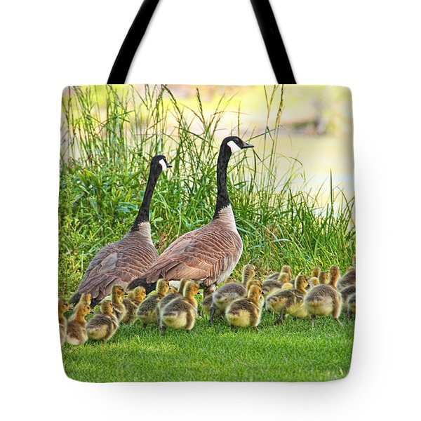 Canadian Geese Family Tote Bag by Jennie Marie Schell