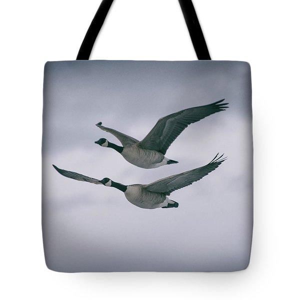 Canadian Geese In Flight Tote Bag