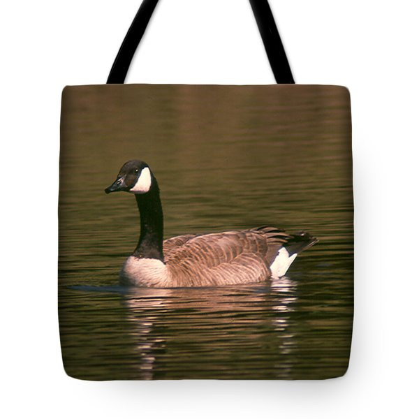 Canadian Goose Tote Bag by Bonnie Muir