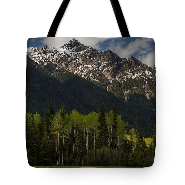 Canadian Rockies With Aspen Trees 5344 Tote Bag