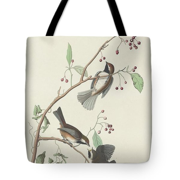 Canadian Titmouse Tote Bag by Rob Dreyer