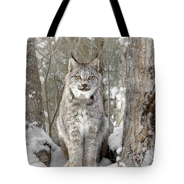 Canadian Wilderness Lynx Tote Bag by Wes and Dotty Weber