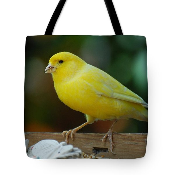 Tote Bag featuring the photograph Canary Domesticated by Ramona Whiteaker