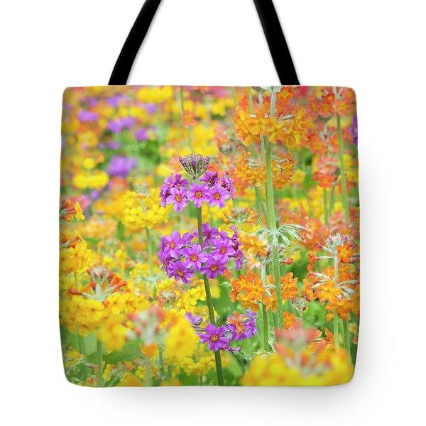 Candelabra Primula Flowers Tote Bag
