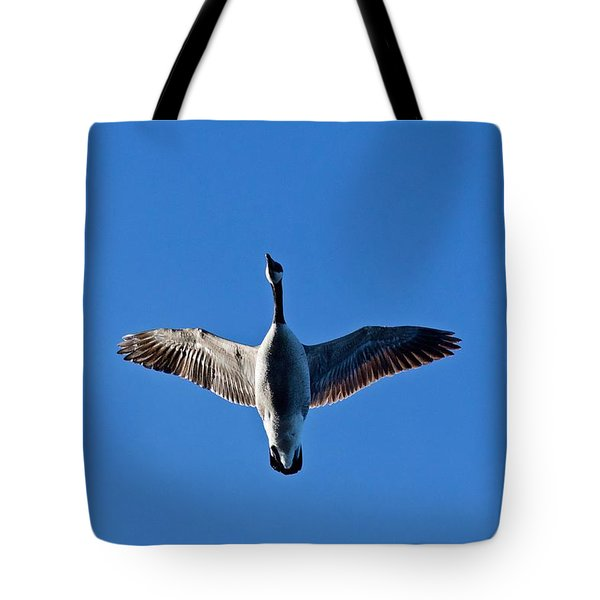 Tote Bag featuring the photograph Candian Goose In Flight 1648 by Michael Peychich