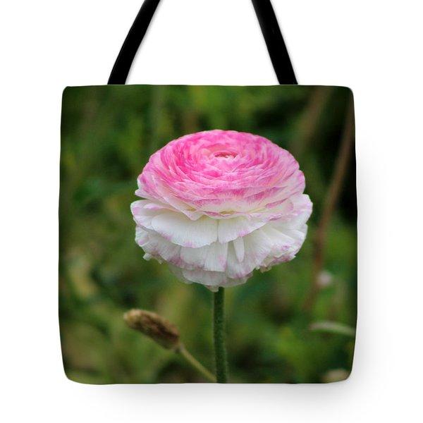 Candy Stripe Ranunculus Tote Bag
