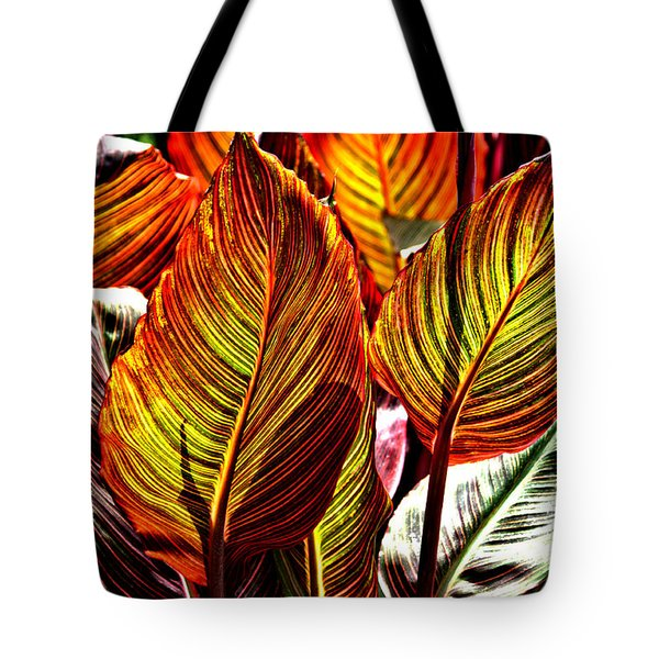 Tote Bag featuring the photograph Canna 26106hdr by Brian Gryphon