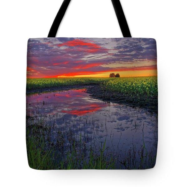 Canola At Dawn Tote Bag