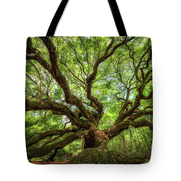 Canopy Of Color At Angel Oak Tree  Tote Bag