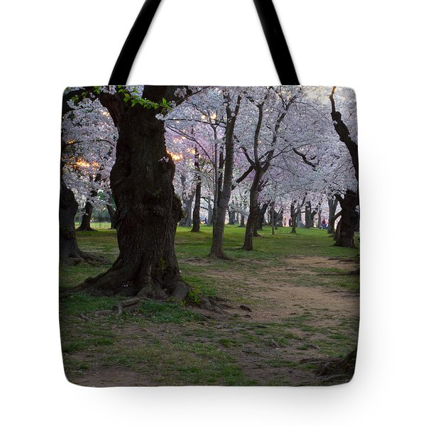 Canopy Of Pink 8x10 Tote Bag