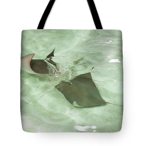 Tote Bag featuring the photograph Can't Catch Me by Carol Lynn Coronios